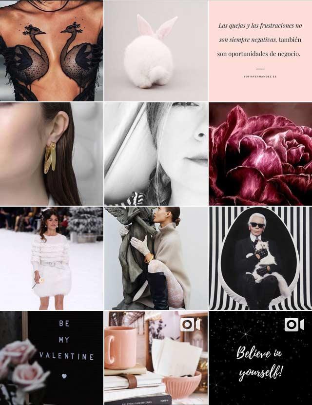 instagram feed cuadricula